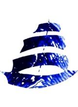 aimanas logo_1