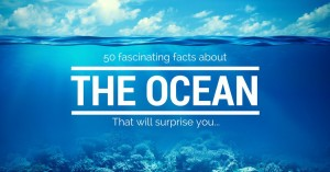 amazing-facts-about-the-ocean-1050x549