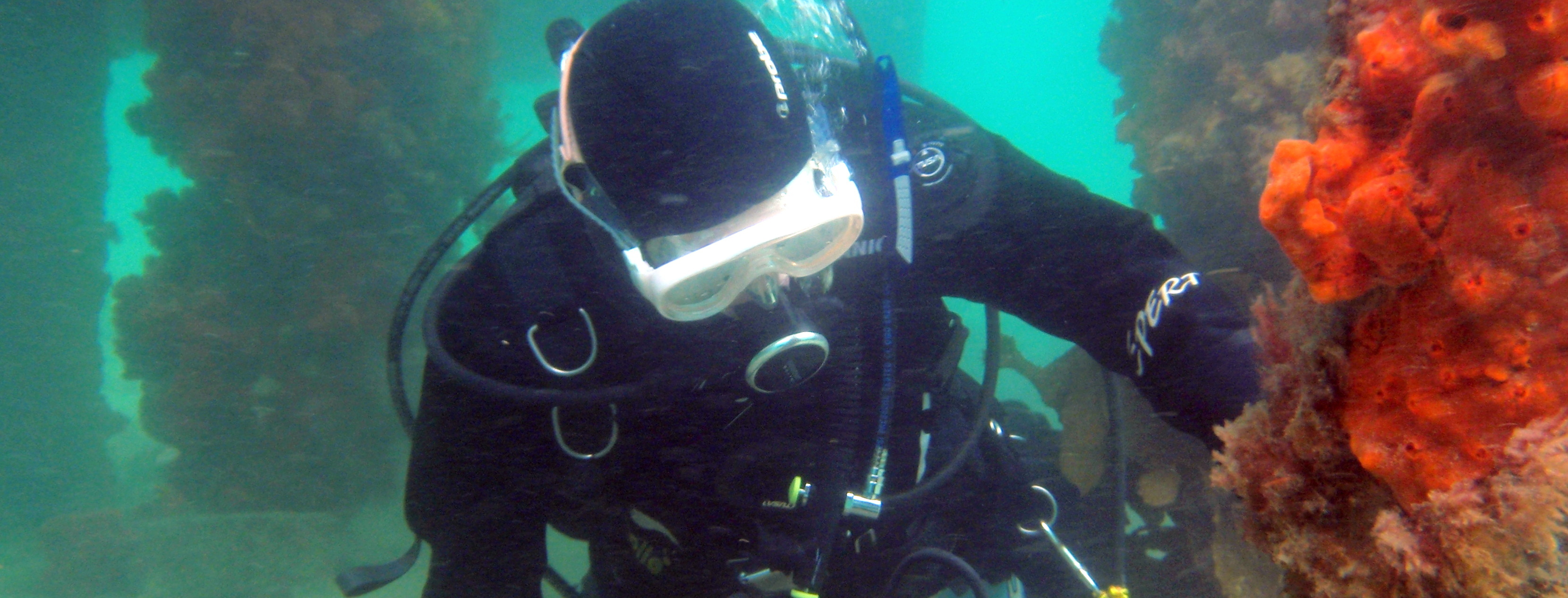 Scuba Diving in Melbourne